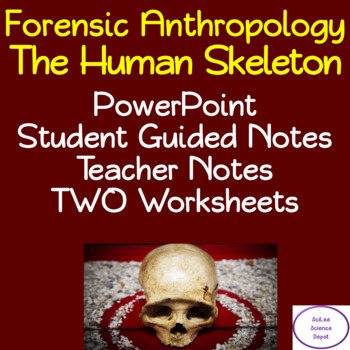 Human Skeleton Powerpoint Illustrated Student Guided Notes Worksheet