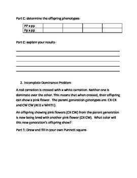Introduction To Genetics Worksheet By Alison Oneal