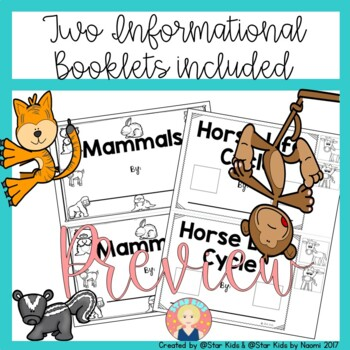 Mammals Characteristics Life Cycle Activities And
