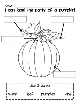 Pumpkin Labeling By Clare S Creations