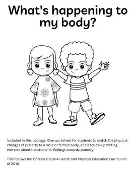 Grade 4 Puberty Worksheet