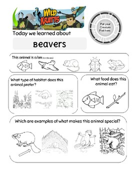 Wild Kratts Build It Beaver Worksheet By Bks Prep Resources Tpt