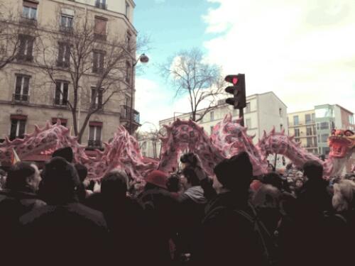 Souvenirs du défilé du Nouvel an (Paris 13) (1/6)