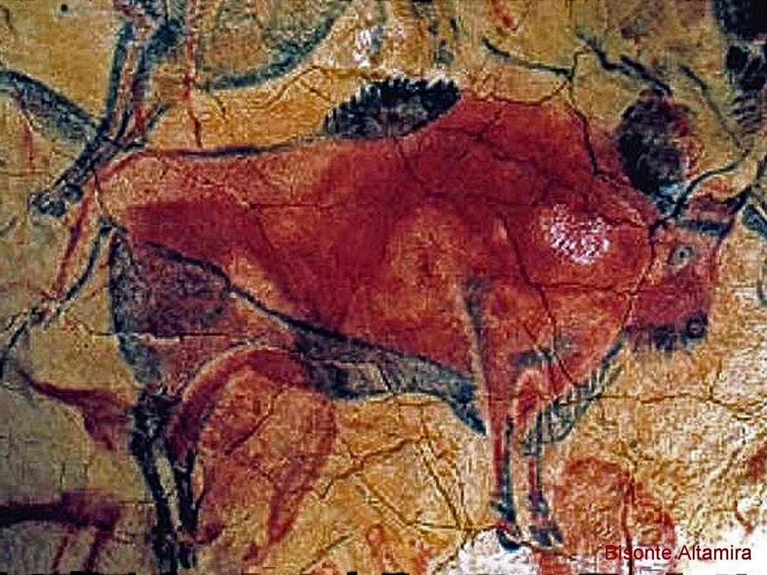 altamira-bison