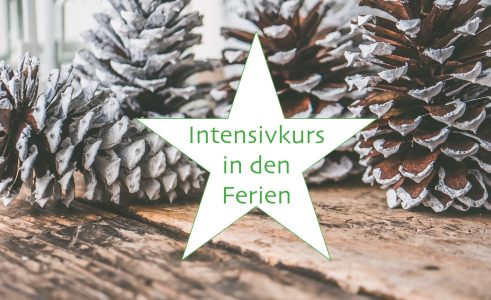 Intensivkurs in den Weihnachtsferien