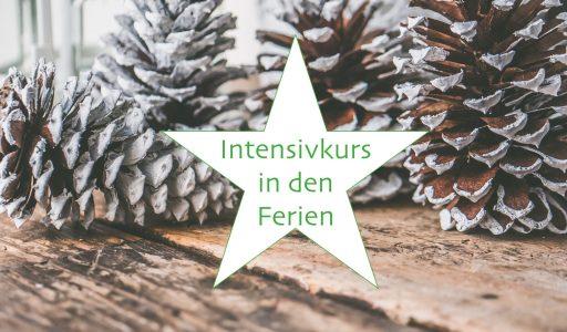 Ferien-Intensivkurs-Weihnachten