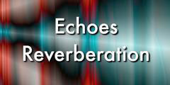 Donate-Echoes Reverberation