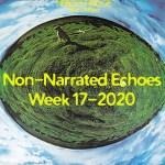 Week 17-2020