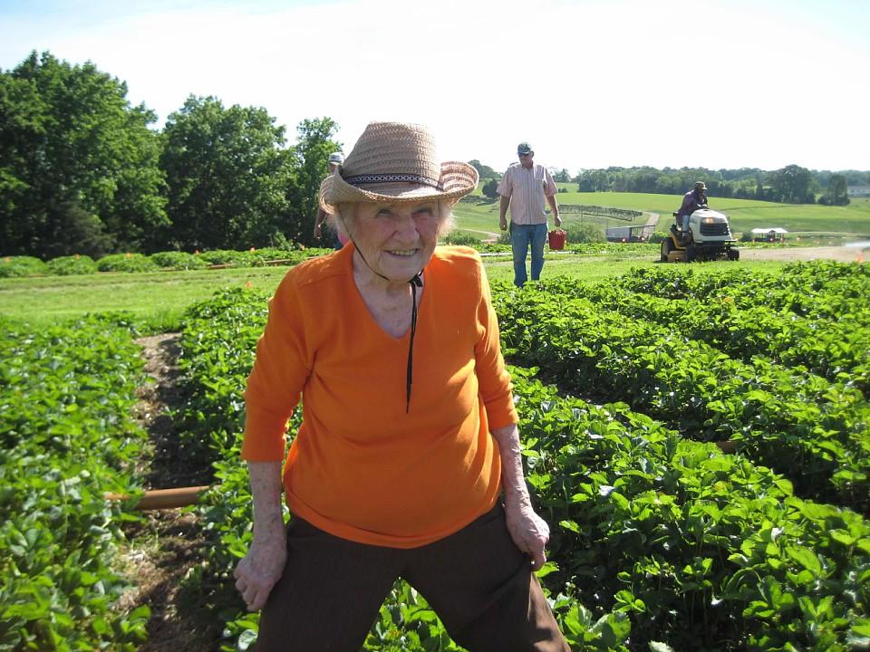 Mama picking strawberries
