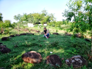 Bhushavali Travelogue Thiruporur Megalithic (5)