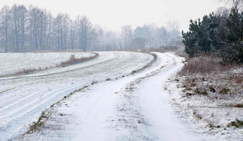 Sypnęło śniegiem... 2