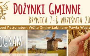 W sobotę ruszają Gminne Dożynki w Brynicy 5