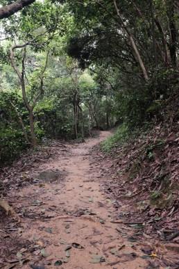 輕鬆簡單的山路