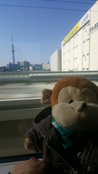If you sit on the left side you can see the Skytree tower!