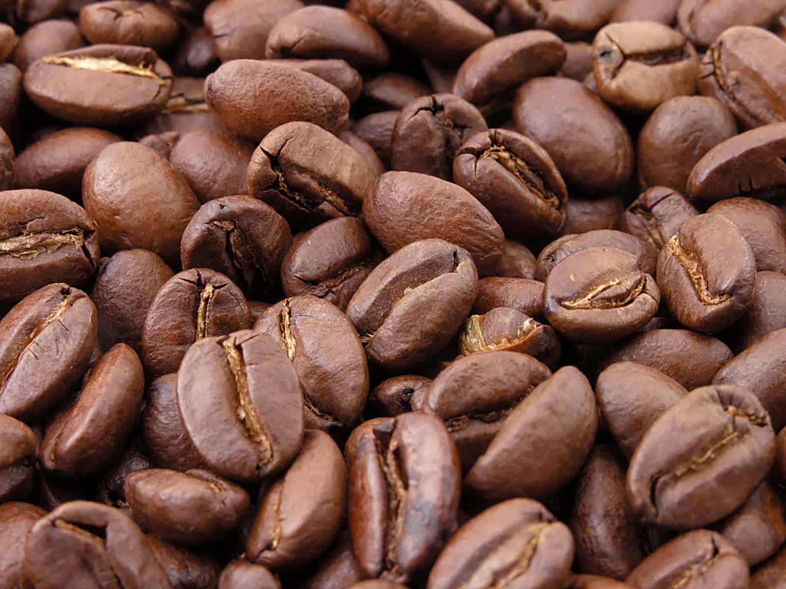 Grains de café torréfié