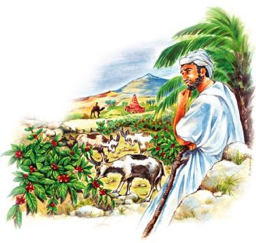 L' Histoire du café débute en Ethiopie