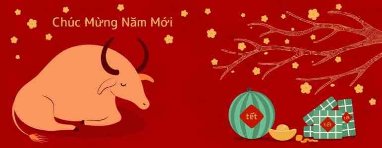 C'est le Tet ! Joyeuse année du buffle ! Chúc mừng năm mới !