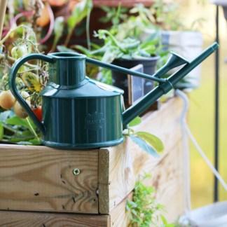 arrosoir plantes d'intérieur en plastique recyclable - vert foncé, vert sapin posé sur un bac potager en bois | l'échoppe végétale