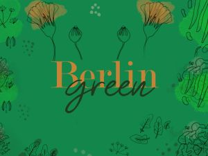 box jardinage automne échoppe végétale, graines et accessoires de jardin pour cultiver un potager sur balcon, rebord de fenêtre, cuisine, sans jardin et en ville de façon naturelle