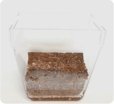 terreau compact fibre de coco sans tourne made in france à Nantes pour plantes en pot appartement