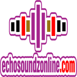 cropped Echosoundz web log site 1 - ECHO GET THE APP