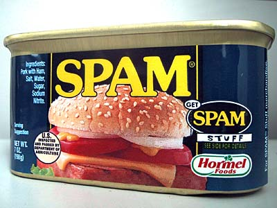 I llove Spam, but not on my Blog please!