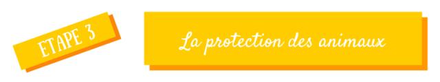 protection animaux éco-défi echosverts.com