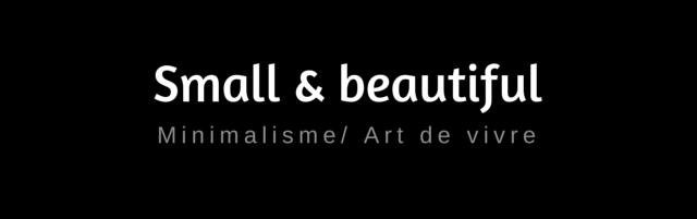 Small et beautiful blog zéro déchet