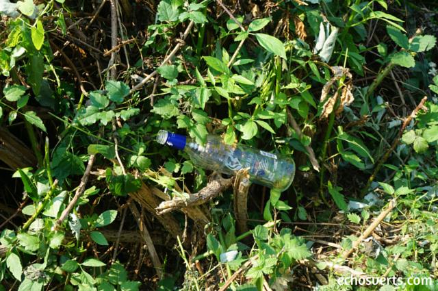 Plastique pollution echosverts.com