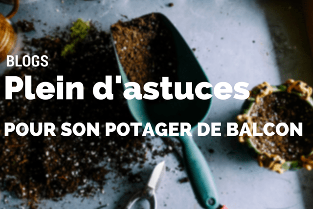 blogs plein d astuces pour son potager de balcon. Black Bedroom Furniture Sets. Home Design Ideas