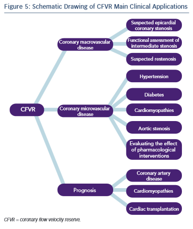 figure5-Schematic-Drawing-of-CFVR-Main-Clinical-Applications