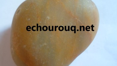 صورة أكثر من ثلاثة آلاف مواطن في تامشكط للتنقيب عن الماس والشروق تنشر صورة لنوعية الأحجار المعثور عليها