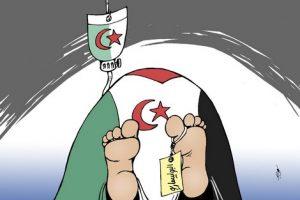 الصورة التي نشرها موقع هسبريس المغربي