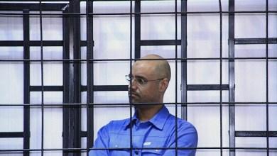 صورة الإفـــــراج  عن سيف الإسلام القذافي