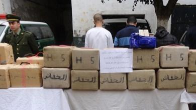 """صورة المخدّرات.. """"غول"""" يلتهم الجزائر من الغرب إلى الشرق"""
