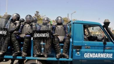 صورة السينغال : إعتقال 5 موريتانيين ومصادرة مبالغ معتبرة من العملة الصعبة كانت بحوزتهم