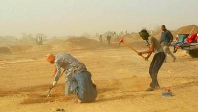 صورة موريتانيا:  الذهب يواصل حصد المزيد من  الأرواح