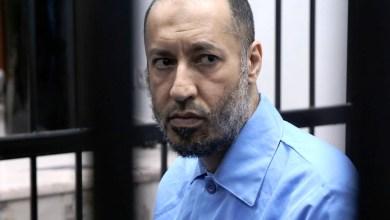 صورة محامية ليبية :الحكومة دفعت 4 مليار دولار لدولة إفريقية مقابل تسليم أحد أبناء القذافي