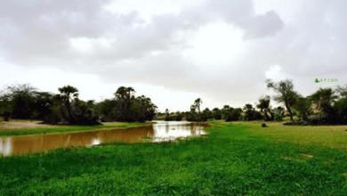 صورة موريتانيا: أمطار في عدة ولايات (مقاييس)