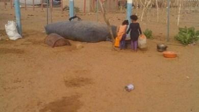 صورة لعصابة : أزمة عطش غير مسبوقة في بلدية  كامور