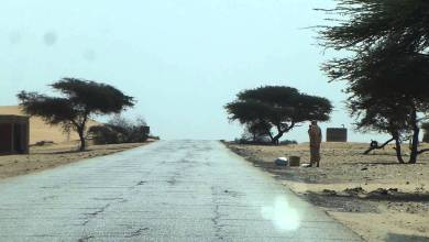 صورة توقيف عنصرين من القاعدة على الحدود الجنوبية لموريتانيا