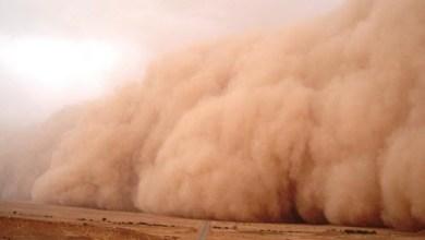 صورة عاصفة رملية قوية تتسبب في سقوط 13 عريش في قرية التوميات بولاية كوركول