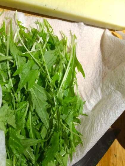 Raapsteel-voor-witloofsalade gezond recept