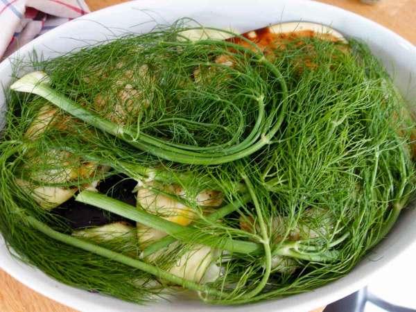 Groen-van-venkel-op-ovenschotel-aubergine