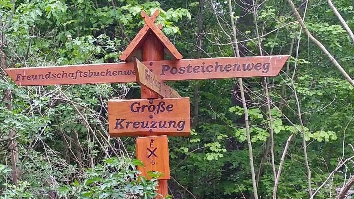 Große Kreuzun_Oderwald