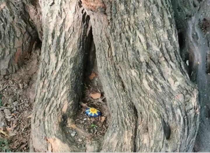 Ein Okeretin mit einer strahlenden Sonne hat es sogar in den Central Park, New York geschafft.