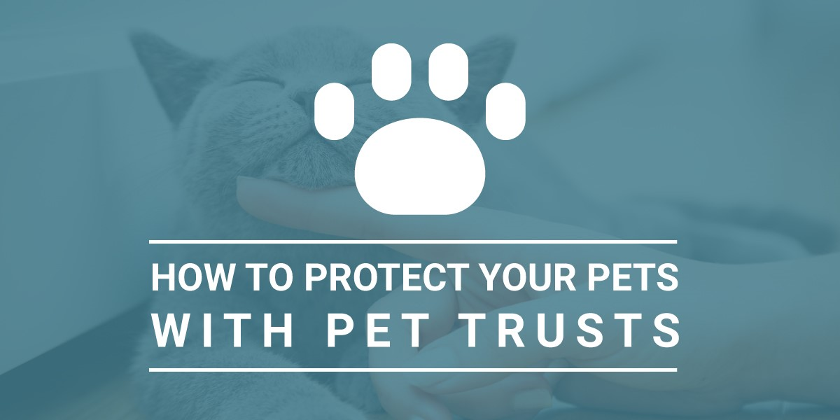 Protecting Pets With a Pet Trust