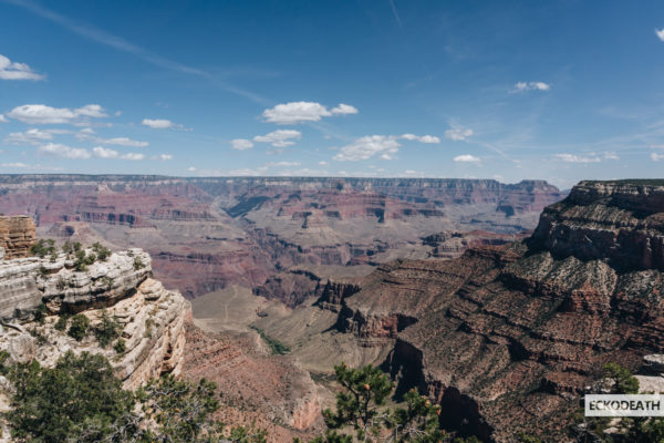 Partie 3 - Grand Canyon_32