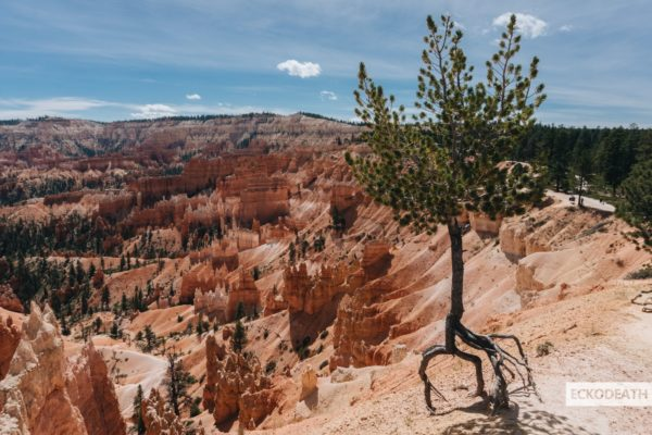 Partie 7 - Bryce Canyon-5-min
