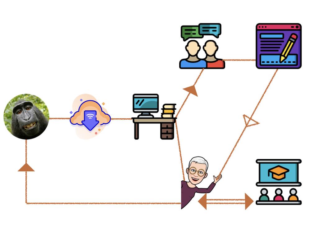 Recertification Flowchart in 4 Steps